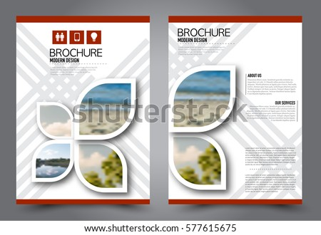 flyer design business brochure template annual stock vector