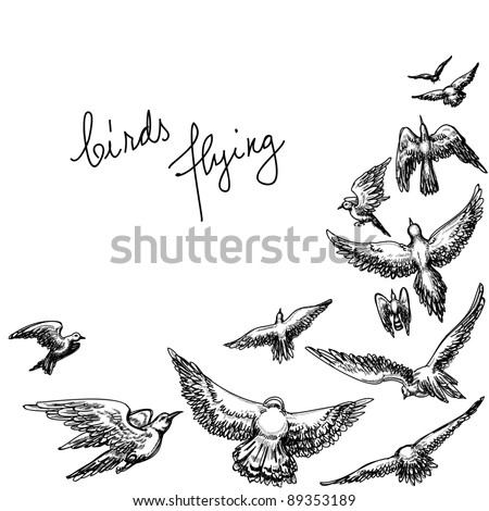 Flying birds background; pencil drawing vector illustration - stock vector