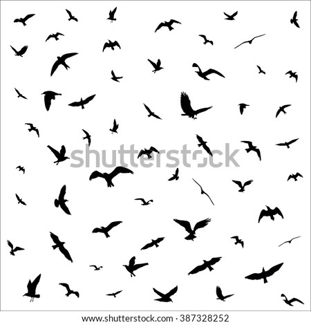 bird silhouette stock images  royalty free images tree bird silhouette vector cute bird silhouette vector