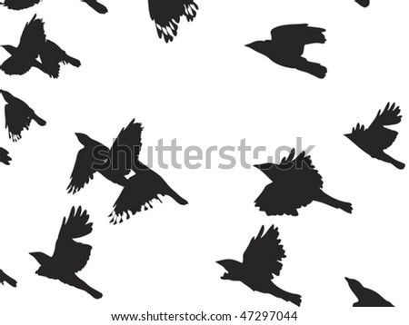 flying crows background