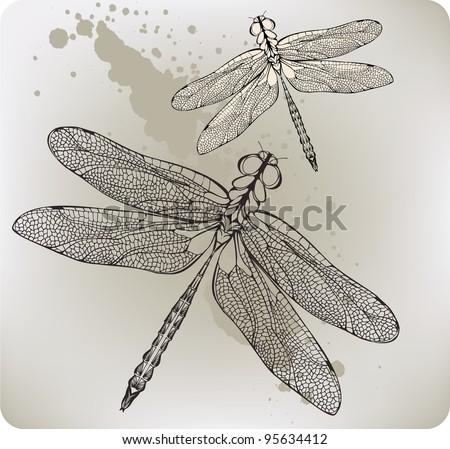 Flying dragonfly, hand-drawing. Vector illustration. - stock vector