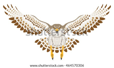 Flying Hawk ,Front view, Isolated
