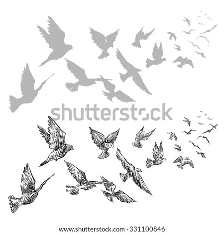 flying pigeons, hand drawn, vector illustration  - stock vector
