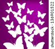 Flying white butterfly on a purple background - stock photo