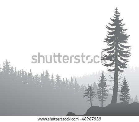 foggy valley - stock vector
