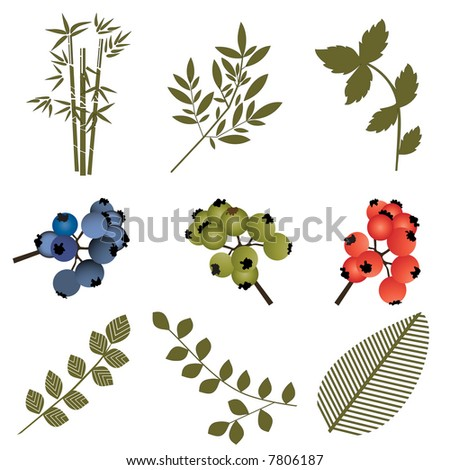 foliage elements layered for easy editing - stock vector