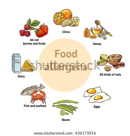 Food allergens. Template - stock vector