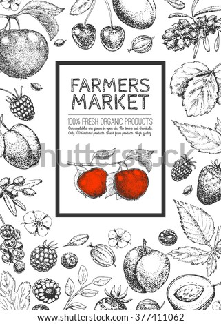 Food design template. Vintage farm logo, fruits and berries. Logotype. Hand drawn vector illustration. Farmers market. Style of etching. Layout. Sketch.