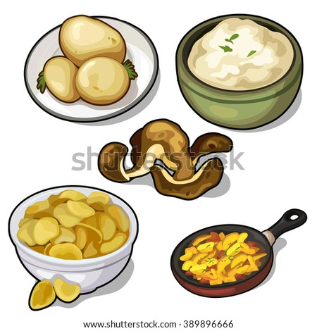 Food from potatoes. Food isolated on a white background. Vector. - stock vector