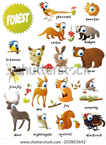 forest animals: bear, titmouse, fox, deer, firefly, doe, nightingale,  blackcock, pheasant, hamster, badger, squirrel, owl, hare, otter and waxwing - stock vector