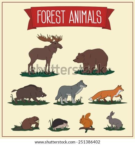 Forest Animals - set vector animals, inhabitants forest - stock vector