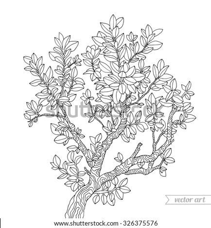 Forest boxwood tree branch with leaves. Vector. Hand drawn artwork. Zentangle. Bohemia concept for invitations, cards, tickets, branding, logo, label. Coloring book page for adults. Black and white - stock vector