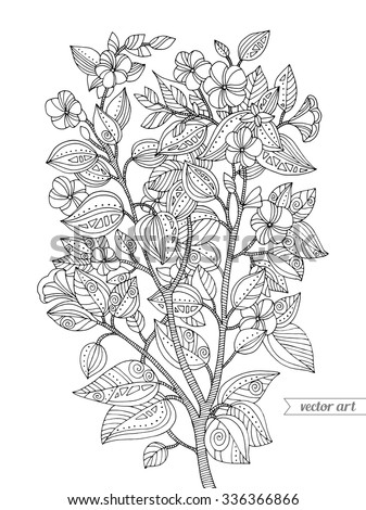 Forest exotic jungle flowers plant, bush, branch with leaves. Vector. Zentangle. Coloring book page for adult. Hand drawn artwork.  Bohemia concept for cards, branding, logo, label. Black and white - stock vector