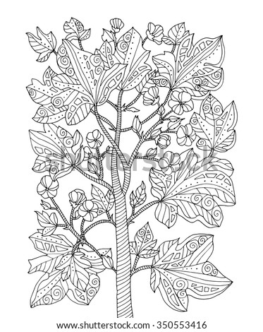 Forest exotic jungle plant, bush, branch with leaves. Vector. Coloring book page for adult. Zentangle. Hand drawn line artwork. Bohemia concept for card, ticket, branding, logo, label. Black and white - stock vector