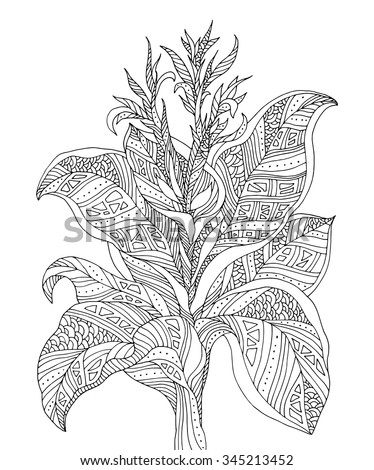 Forest exotic jungle plant, bush, flowers, branch with leaves. Vector. Coloring book page for adults. Hand drawn artwork. Bohemia concept for cards, tickets, branding, logo, label. Black and white - stock vector