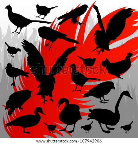 Forest hunting bird detailed silhouettes illustration collection background vector - stock vector