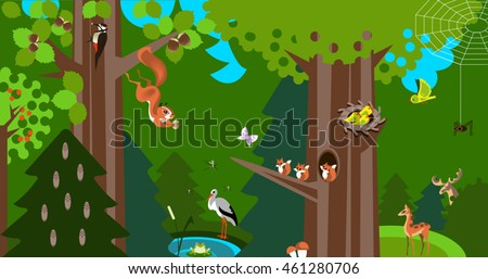 Forest  info-graphic in low polygon style. Vector illustration of forest animals.