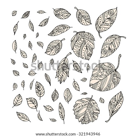 Forest leaves. Vector. Hand drawn artwork. Set collection. Bohemia concept for cards, tickets, congratulations, branding, logo, label. Web and mobile interface template. Black and white, beige - stock vector