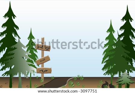 Forest trail - stock vector