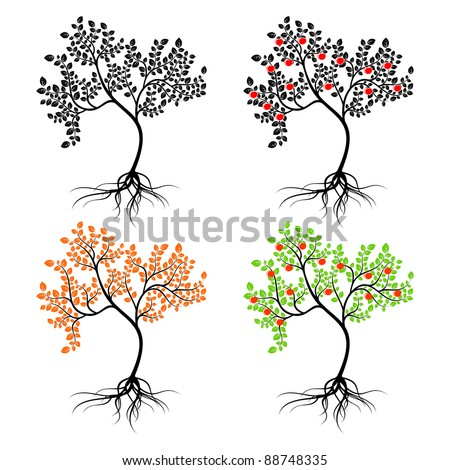 Four different isolated trees on a white background. - stock vector