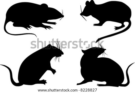 four rat silhouettes isolated on white background