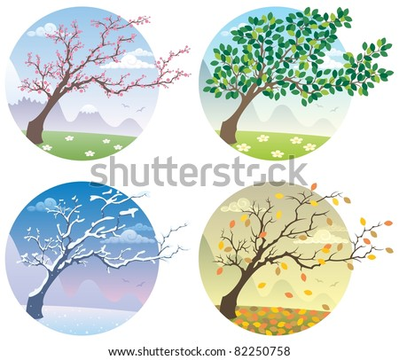 Four Seasons: Cartoon illustration of a tree during the four seasons. No transparency used. Basic (linear) gradients. - stock vector