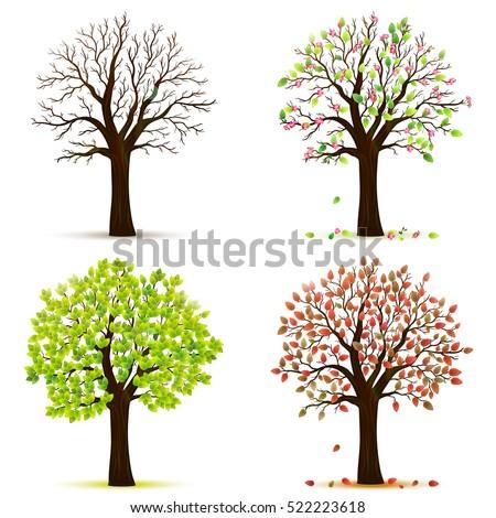 four seasons trees vector stock vector 522223618