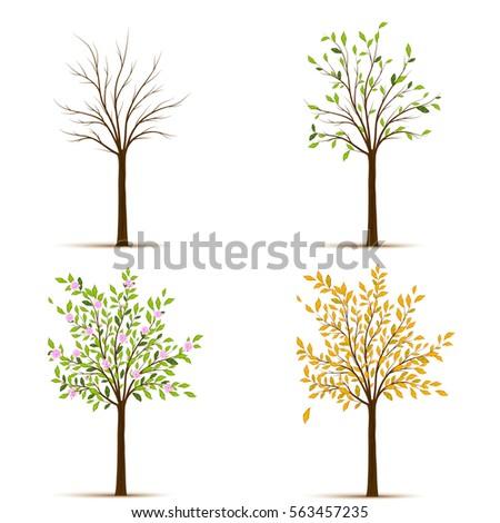four seasons trees vector stock vector 563457235