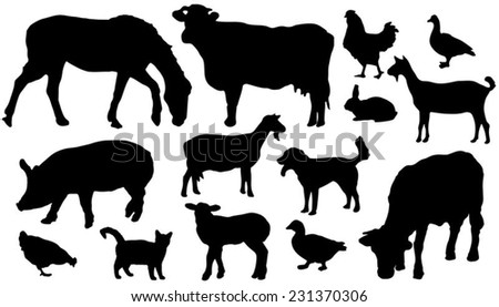 fourteen farm animals silhouettes on the white background - stock vector