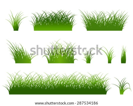 Fragment of a beautiful green grass  isolated on a white, Vector illustration - stock vector