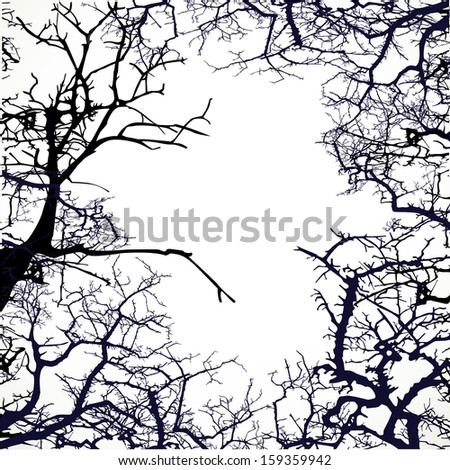 Frame from silhouettes of bare branches of trees - stock vector