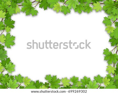 Frame from the green maple leaves on white background. Vector realistic illustration. Element for design greeting nature cards.