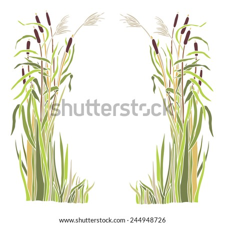 Frame of the reeds - stock vector