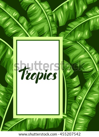 Frame with banana leaves. Image of decorative tropical foliage. - stock vector