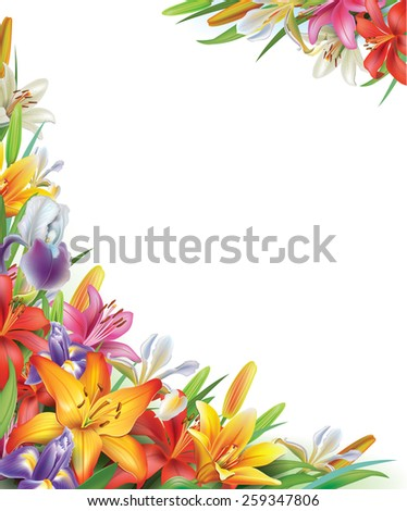Frame with Iris and lilies flowers - stock vector