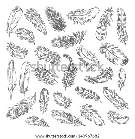 Freehand drawing quill. Vector illustration. Isolated on white background - stock vector
