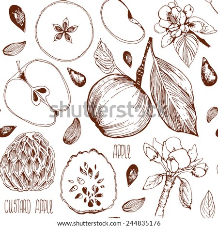 Freehand drawing. Seamless pattern. Sketch of an apple, leaf, apple seeds, flowers, apple and a cut apple. drawn by hand. Custard apple. Incision cream apple. - stock vector