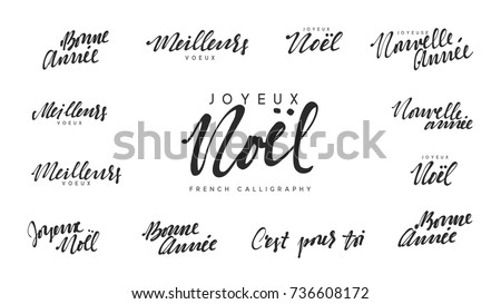 French text Joyeux noel, Meilleurs Voeux, Bonne annee. Merry Christmas and Happy New Year, black text calligraphy