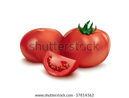 Fresh and ripe tomatoes - stock vector