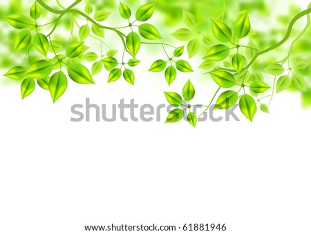 Fresh Green Background - vector leaves in the summer. - stock vector