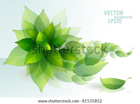 Fresh green leaves vector background. - stock vector