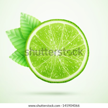 fresh lime with leaves eps10 vector illustration - stock vector