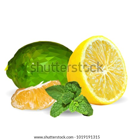 Fresh Mint Nutritious Lemon Tasty Lime Stock Vector 1019191315