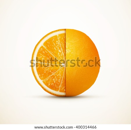 Fresh orange fruit cut on half eps10 vector illustration - stock vector