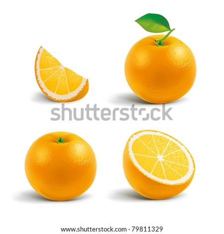 Fresh Oranges - stock vector