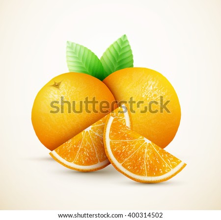 Fresh oranges fruits with green leaves and slices eps10 vector illustration - stock vector