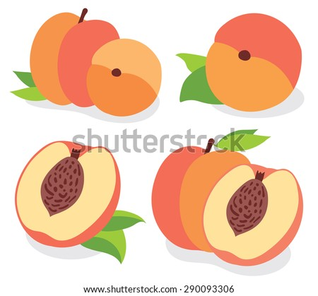Fresh peaches collection, vector illustrations - stock vector