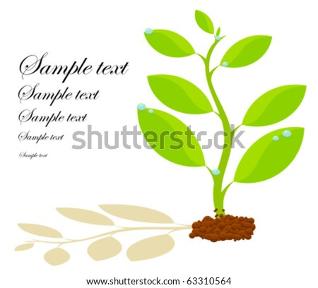 Fresh plant growing in soil with shadow. Symbol of life and spring  with copy space - stock vector