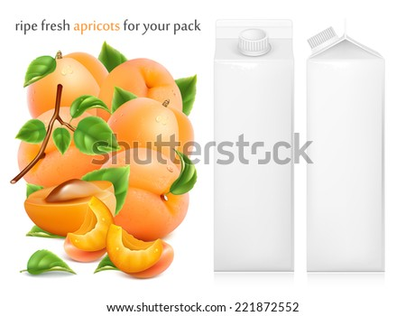 Fresh ripe apricots with green leaves and water drops. Juice white carton package. Vector illustration - stock vector