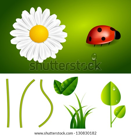 Fresh Spring and Summer Nature Elements - stock vector